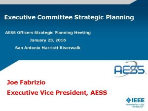 Executive Committee Strategic Planning AESS Officers Strategic Planning