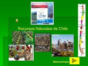 Recursos Naturales de Chile Men principal MEN PRINCIPAL
