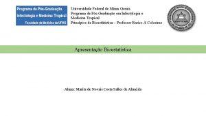 Universidade Federal de Minas Gerais Programa de PsGraduao