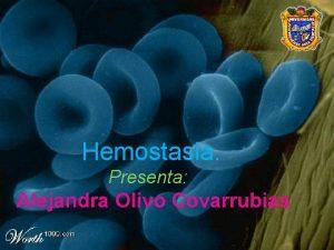 Hemostasia Presenta Alejandra Olivo Covarrubias Hemostasia Primaria Secundaria