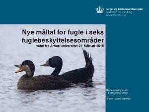 Nye mltal for fugle i seks fuglebeskyttelsesomrder Notat