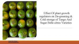 Effect Of plant growth regulators on Degreening Cold