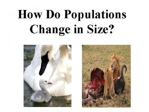 How Do Populations Change in Size Populations A