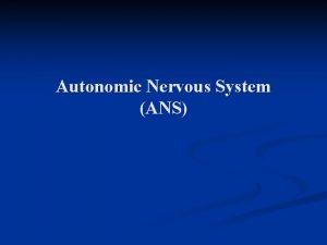 Autonomic Nervous System ANS Nervous System n n