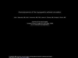 Hemodynamics of the hypogastric arterial circulation John I