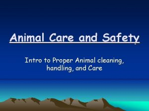 Animal Care and Safety Intro to Proper Animal