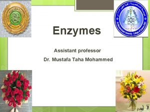 Enzymes Assistant professor Dr Mustafa Taha Mohammed Enzymes