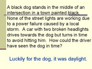 A black dog stands in the middle of