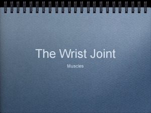 The Wrist Joint Muscles Muscles Elbow flexors anterior