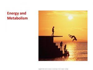 Energy and Metabolism I Energy Basics I Energy