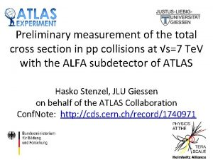 Preliminary measurement of the total cross section in