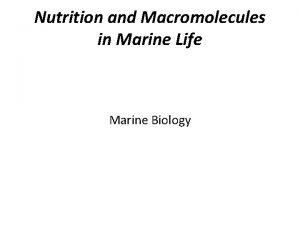 Nutrition and Macromolecules in Marine Life Marine Biology