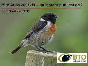 Bird 2007 11 aninstant publication Bird Atlas 2007