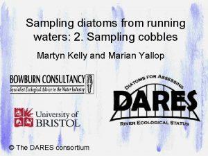 Sampling diatoms from running waters 2 Sampling cobbles