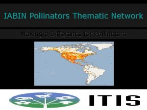 IABIN Pollinators Thematic Network Making a Difference for