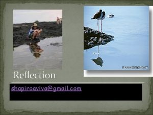 Reflection shapiroavivagmail com Why should you use Reflection