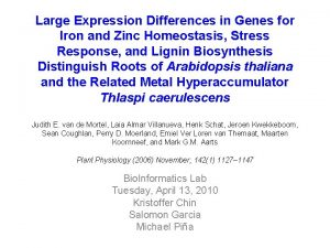 Large Expression Differences in Genes for Iron and