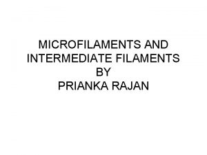 MICROFILAMENTS AND INTERMEDIATE FILAMENTS BY PRIANKA RAJAN Microfilaments