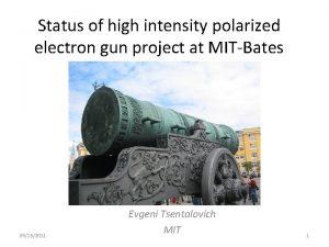 Status of high intensity polarized electron gun project