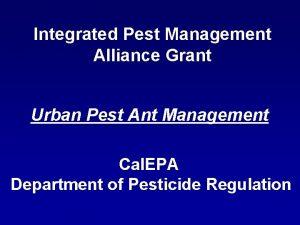 Integrated Pest Management Alliance Grant Urban Pest Ant