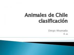 Animales de Chile clasificacin Diego Ahumada 4 a