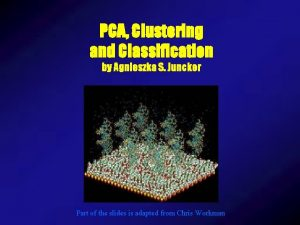 PCA Clustering and Classification by Agnieszka S Juncker