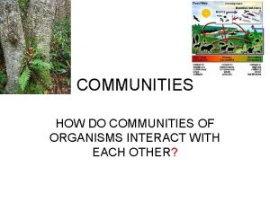 COMMUNITIES HOW DO COMMUNITIES OF ORGANISMS INTERACT WITH