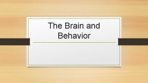 The Brain and Behavior Left and Right Hemisphere