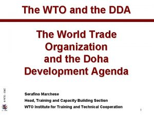 The WTO and the DDA WTO OMC The