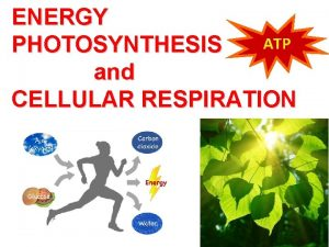 ENERGY ATP PHOTOSYNTHESIS and CELLULAR RESPIRATION Energy is