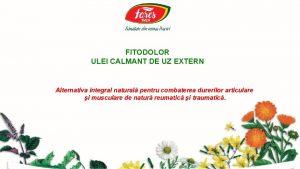 FITODOLOR ULEI CALMANT DE UZ EXTERN Alternativa integral