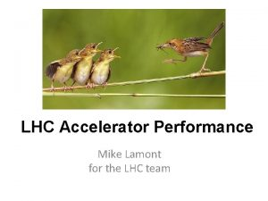 LHC Accelerator Performance Mike Lamont for the LHC
