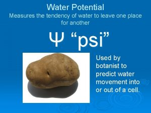 Water Potential Measures the tendency of water to