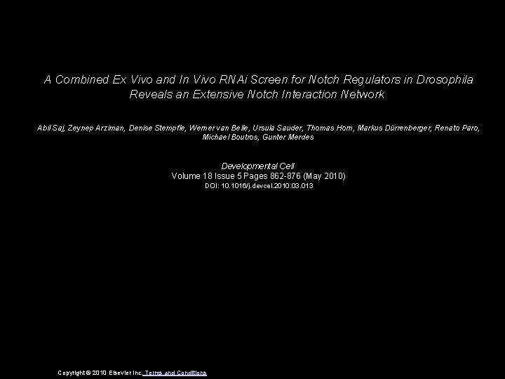 A Combined Ex Vivo and In Vivo RNAi