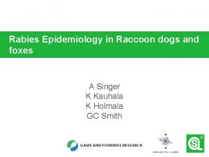 Rabies Epidemiology in Raccoon dogs and foxes A