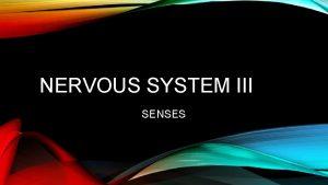 NERVOUS SYSTEM III SENSES INTRODUCTION General Senses are