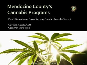 Mendocino Countys Cannabis Programs Panel Discussion on Cannabis