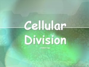 Cellular Division Student Copy 1 Cell Division All