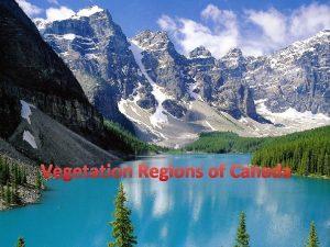 Vegetation Regions of Canada Vegetation Regions A regions