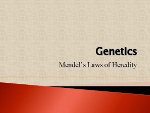 Genetics Mendels Laws of Heredity Genetics Main Concepts