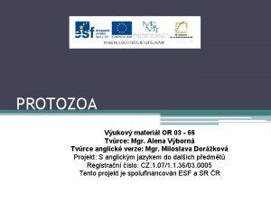 PROTOZOA Vukov materil OR 03 66 Tvrce Mgr