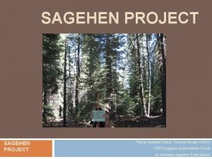 SAGEHEN PROJECT Tahoe National Forest Truckee Ranger District