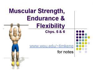 Muscular Strength Endurance Flexibility Chps 5 6 www
