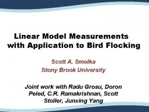 Linear Model Measurements with Application to Bird Flocking