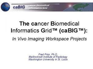 The cancer Biomedical Informatics Grid ca BIG In