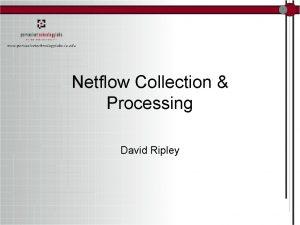 Netflow Collection Processing David Ripley David A J