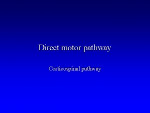 Direct motor pathway Corticospinal pathway Motor Units Large