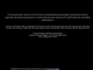 The transcription factors GATA 2 and microphthalmiaassociated transcription