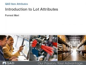 QAD Item Attributes Introduction to Lot Attributes Forrest