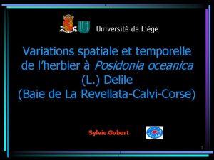 Variations spatiale et temporelle de lherbier Posidonia oceanica